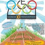 paraolimpiada2014-plakat